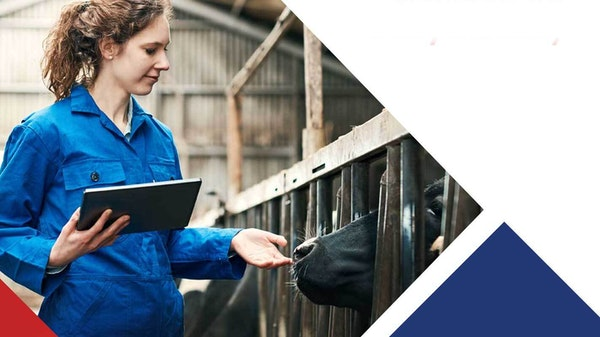 Brochure cover for the Customised Training Dairy Industry brochure