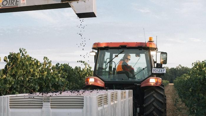 Tractor among vineyard